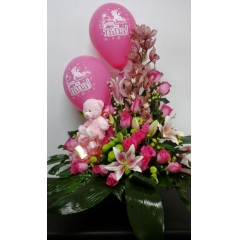Centro Baby pink