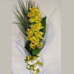 Vara Orquídea Cimbidium