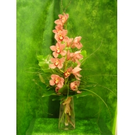 Orquidea cimbidium en cristal